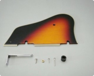 Guitar-Store - Ibanez Pickguards Page 6